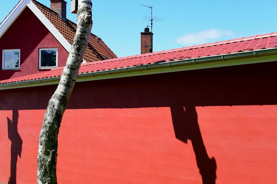 Red House with Shadows and Chimneys in Femmøller Strand Window Windows Chimney Tree Birch Tree Birch Antenna Nikon1 Nikon1j4 Color Palette
