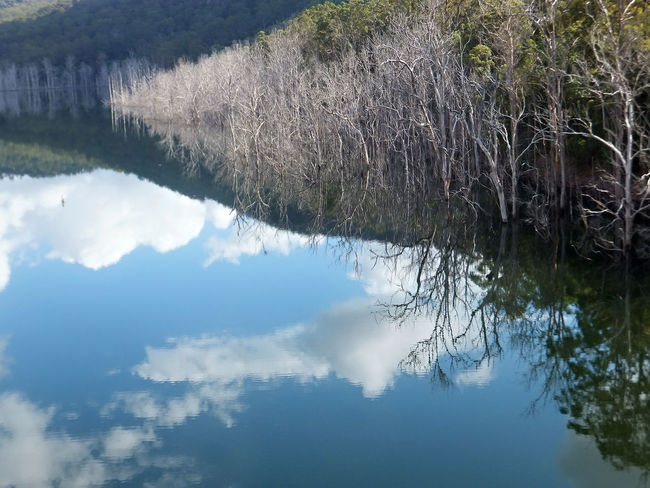 The upper intake of the Hinze dam on the Gold Coast Australia. Beauty In Nature Cloud - Sky Day Lake Nature No People Outdoors Reflection Scenics Sky Tranquility Tree Water
