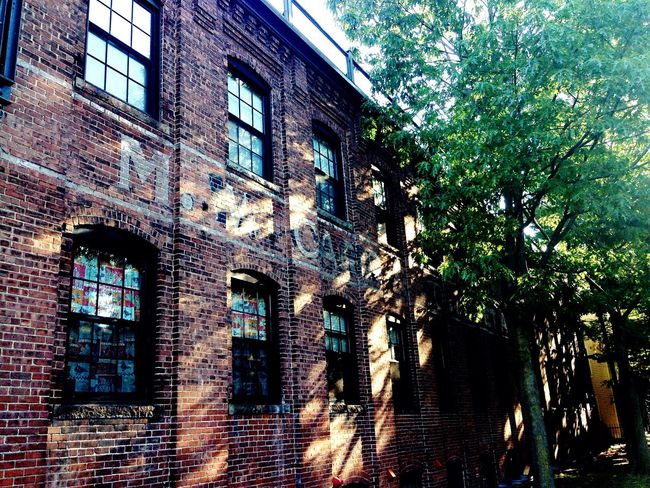 Warehouse Old Old Buildings Built Structure Building Exterior Window Tree Brick Wall Brick Brick Building