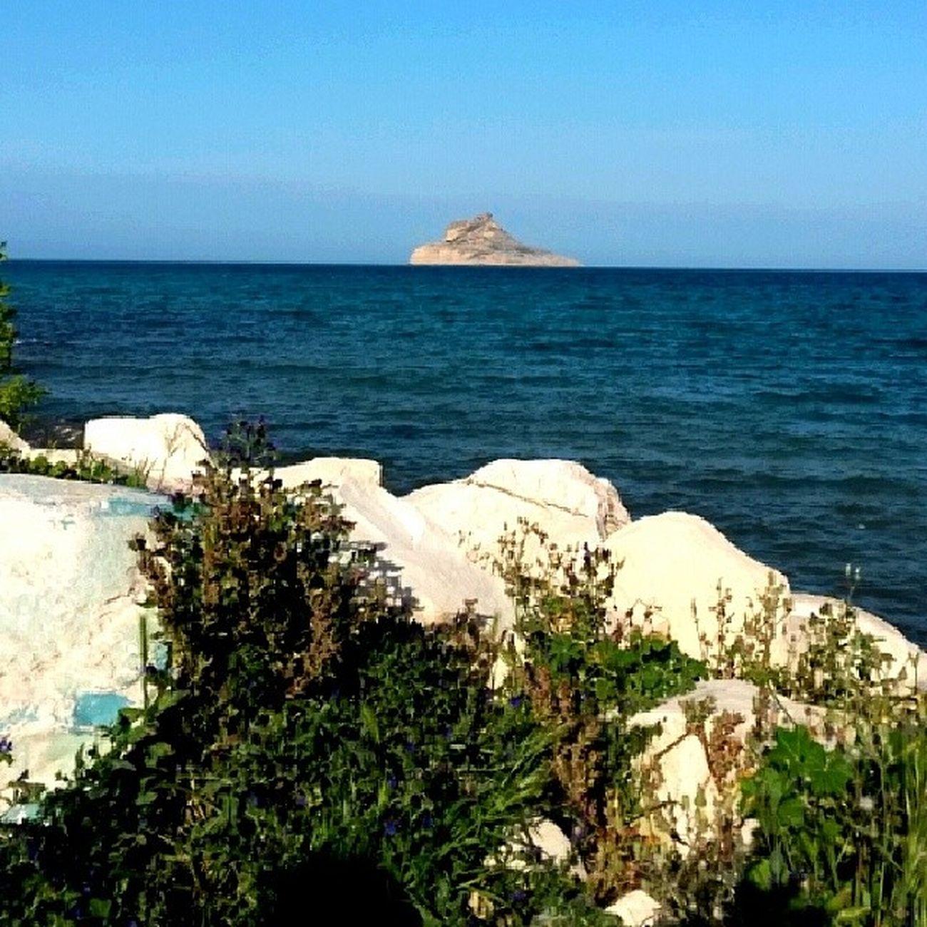 Tunisie Rafraf