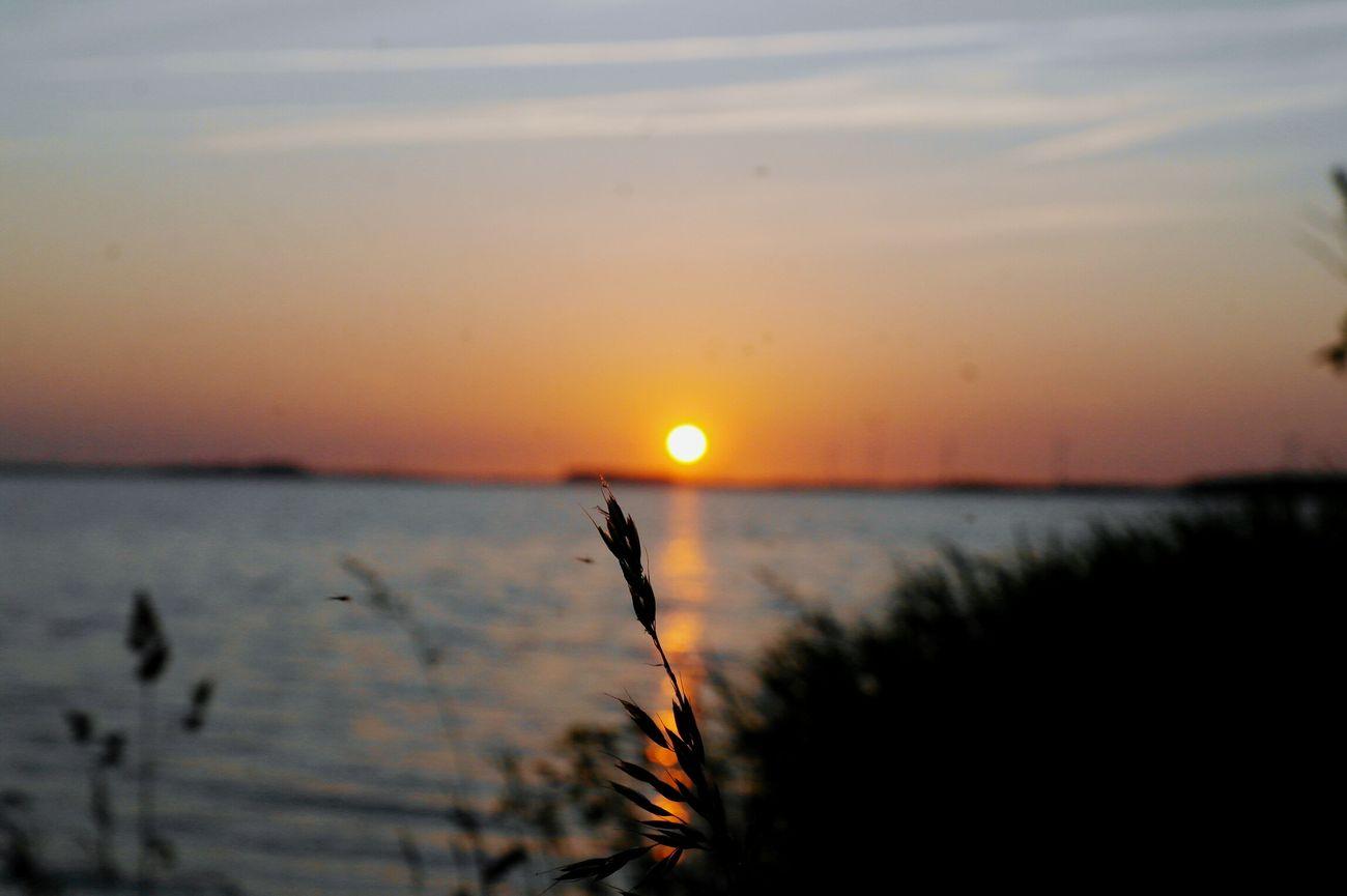 Sunset Netherlands Harderwijk Sunset View Beach