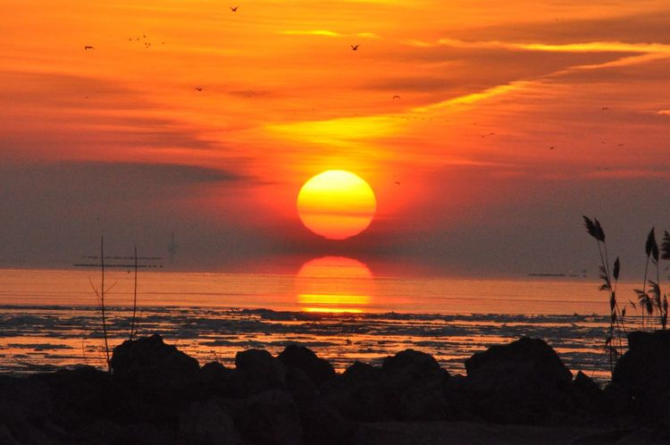 Pure Michigan Lake Erie Metropark Gibraltar Michigan Sunrise Sunrise_sunsets_aroundworld Tranquil Scene Beauty In Nature Nikon D90 Raw