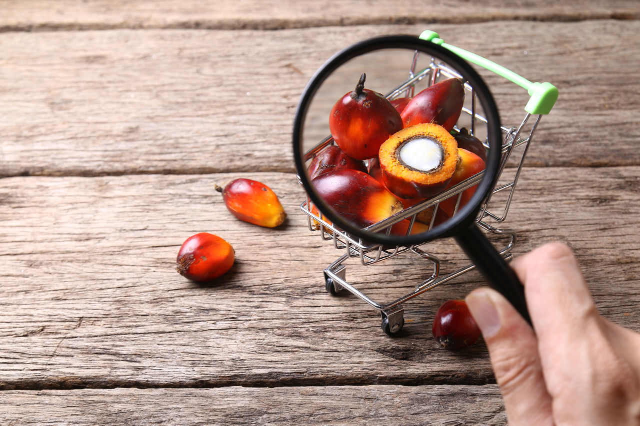 Oil palm seeds in trolley. Concept of palm oil ingredient in market products. Agriculture Analysis Commodity Consumer Content Cooking Export Fruit Glass INDONESIA Indoors  Industrial Industry Ingredient Macro Magnifying Glass Malaysia Market Oil Oil Palm Palm Palm Oil Supermarket