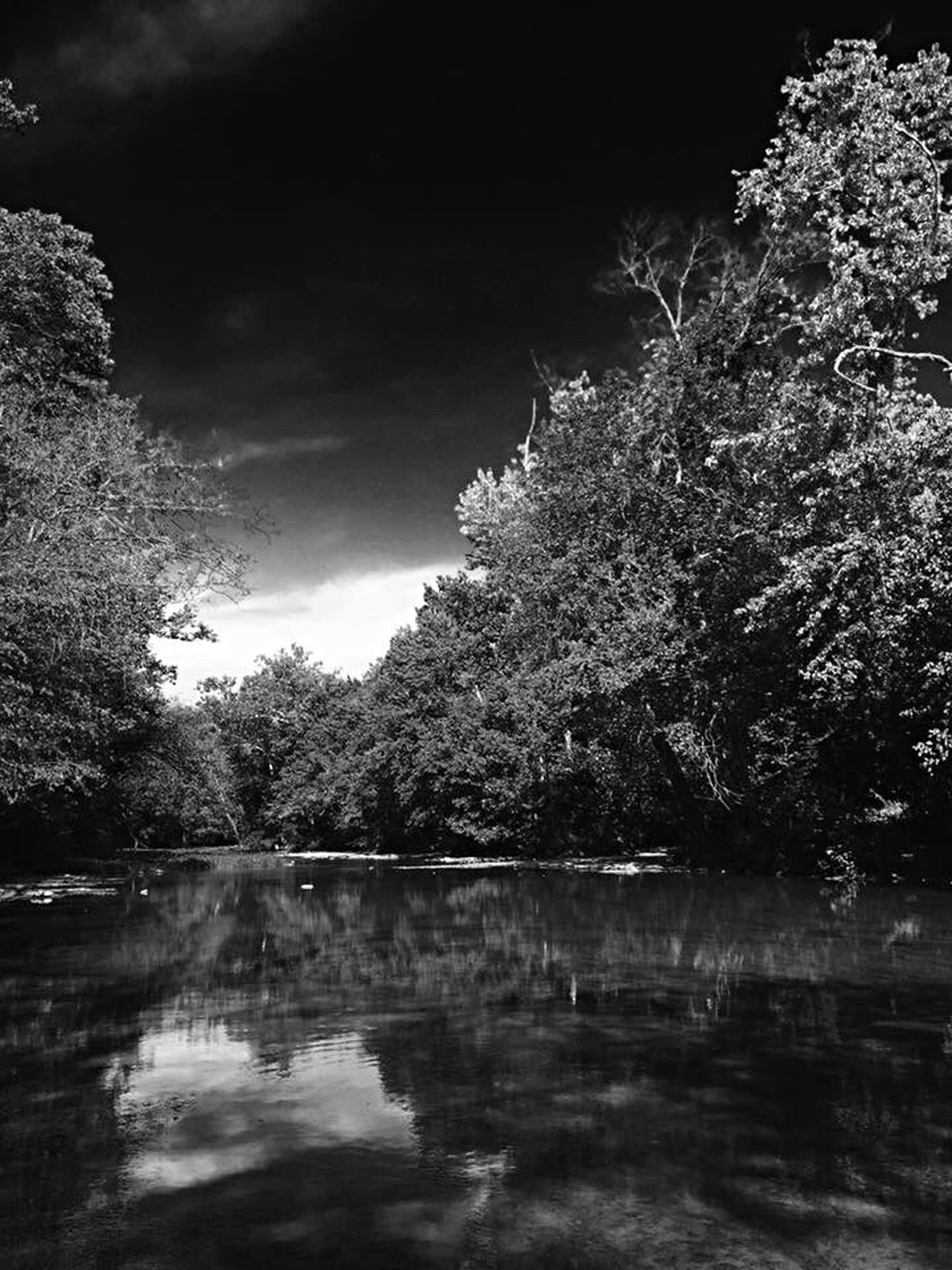 👁🗨 No People Tree Sky Reflection Water Outdoors Nature Tranquility Beauty In Nature Reflection Lake