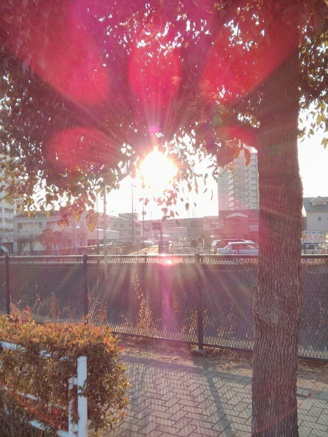 warming up in Musashiurawa