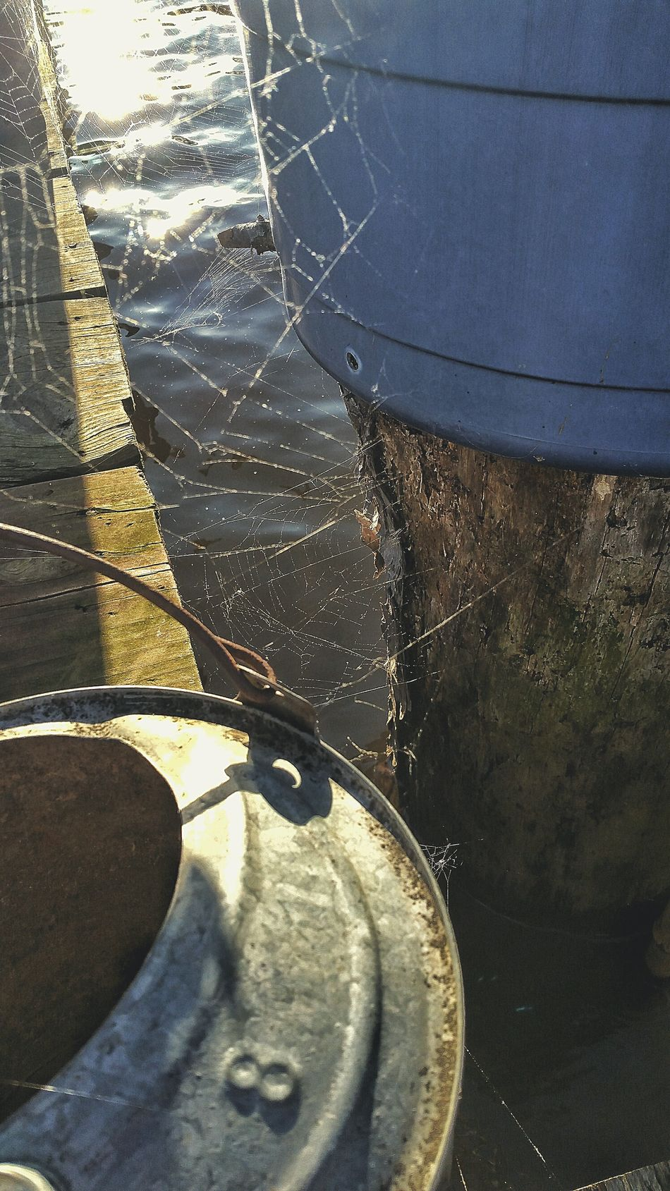 Reflection Water Close-up Day Low Section Outdoors Web Spider Web Waterer Water Dock Boat Dock Deck Wooden Dock Fishing Web Over Water Spider Hunting