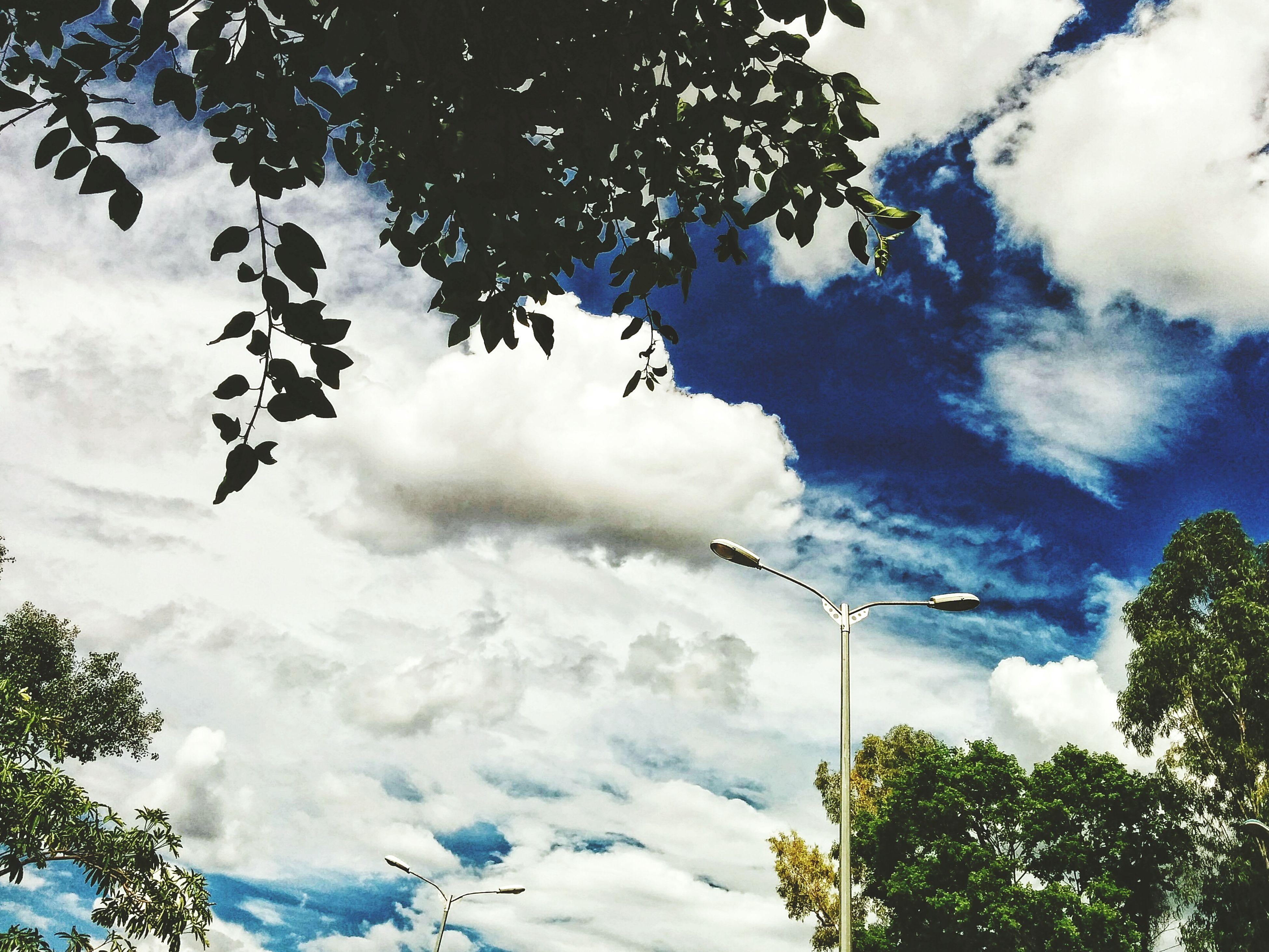 Blue sky. Cloudporn Bluesky Firstpostof2015 Nexus5 Nexus5photography Beautifulday Pune India Incredible India Incredibleindia