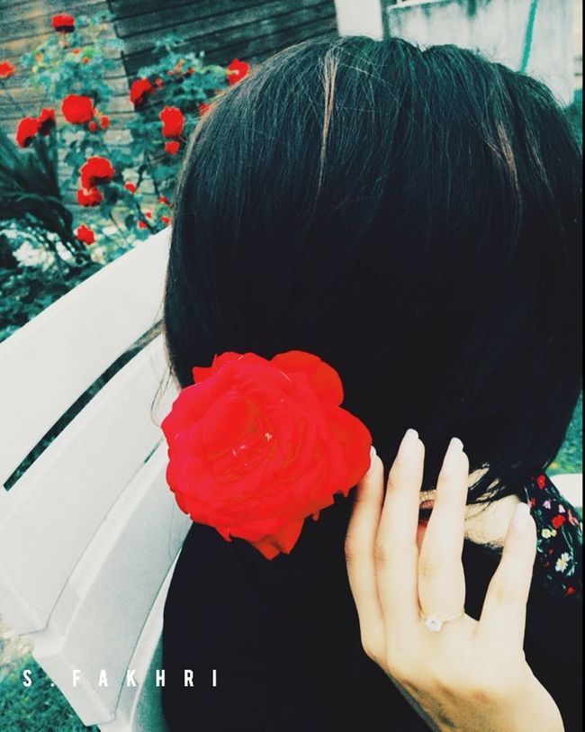 A Photography Made By Me Made By Me Red Roses LoveMySister❤