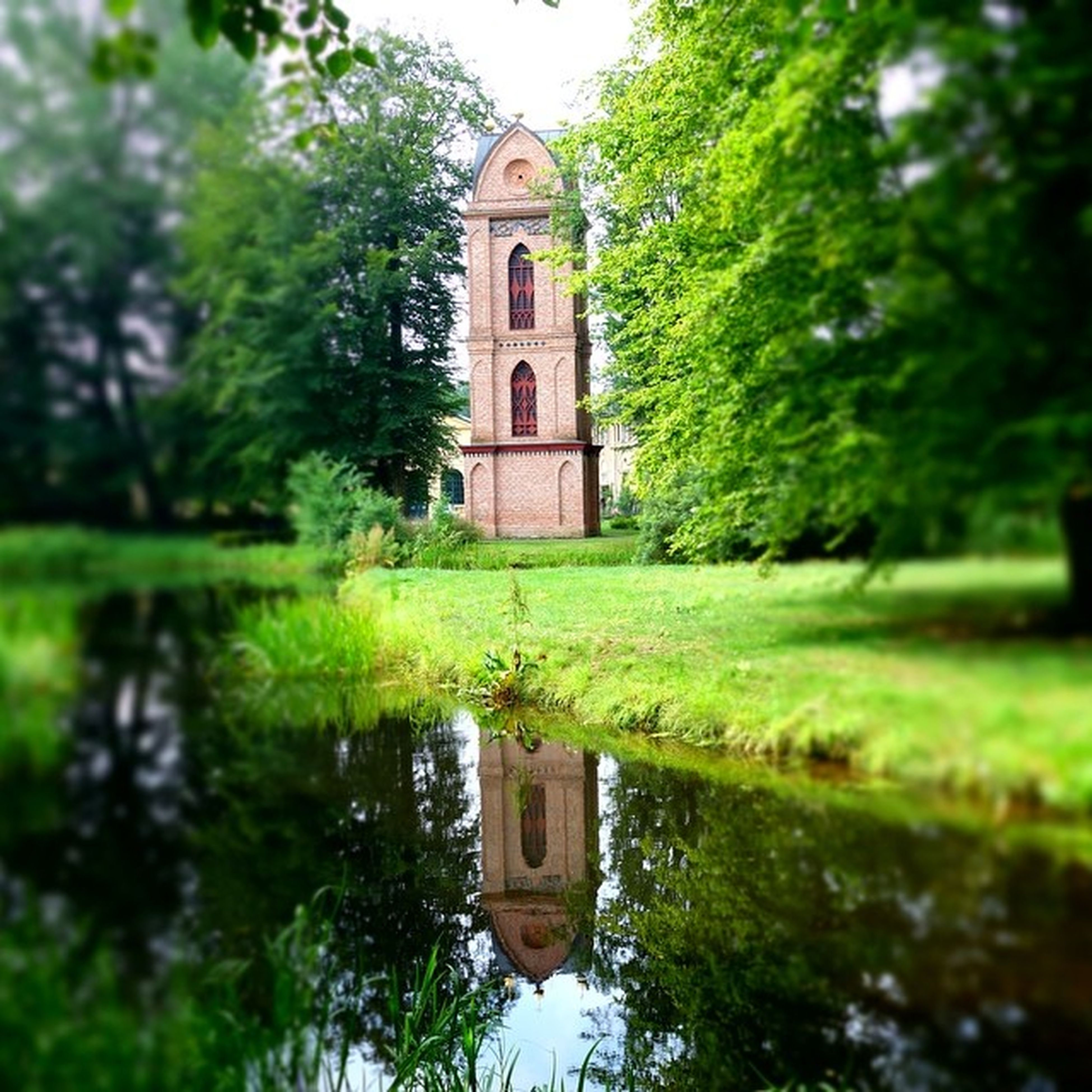 tree, building exterior, architecture, built structure, green color, reflection, growth, religion, house, church, place of worship, nature, spirituality, plant, day, outdoors, tranquility, no people, water