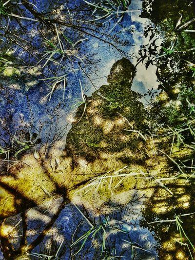 5 Shot Colour Splash Challenge Selfportrait Autumn Colors