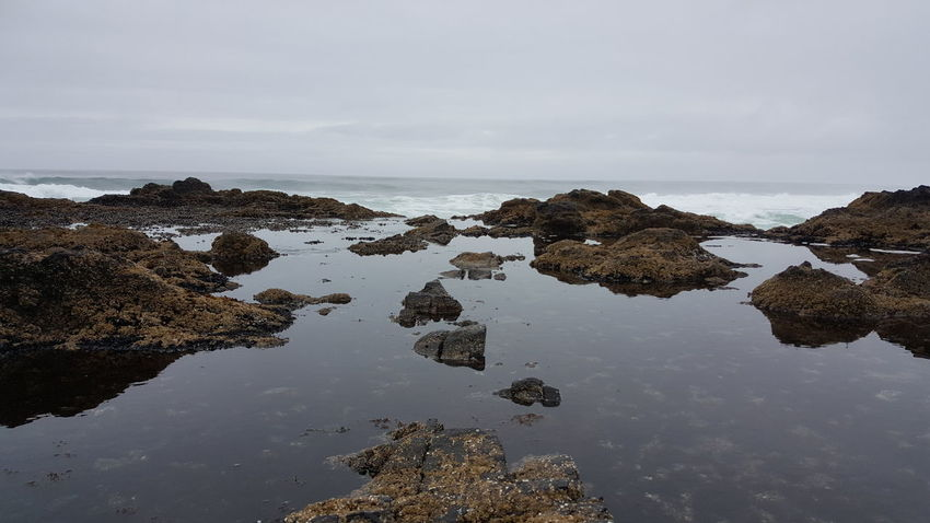 Sea Water Landscape Beach Rock - Object Outdoors No People Nature Low Tide Horizon Over Water Sky Day Tidepools Oregon Coast Coast Cape Perpetua Fog Rain Travel Destinations EyeEm Selects Done That. An Eye For Travel