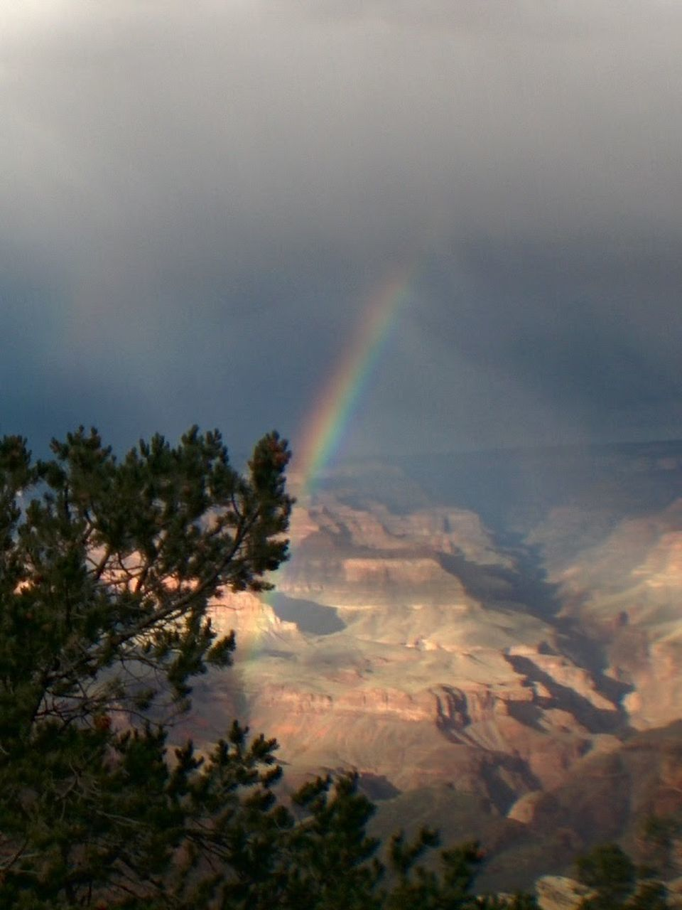 rainbow, double rainbow, beauty in nature, scenics, tree, nature, no people, day, outdoors, cloud - sky, tranquility, mountain, refraction, sky, spectrum