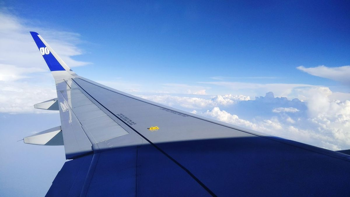EyeEm Selects Indigo Airlines Sky
