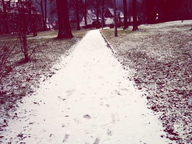 First Snow :-)