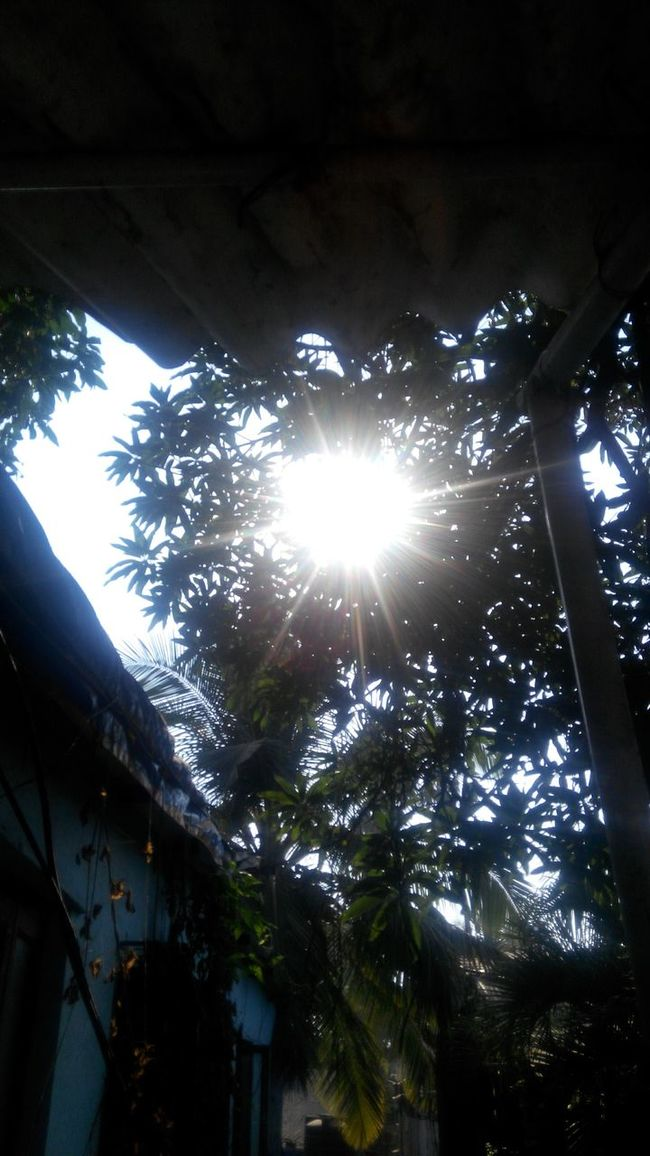 Sun PowerTrip Illusions and Delusions
