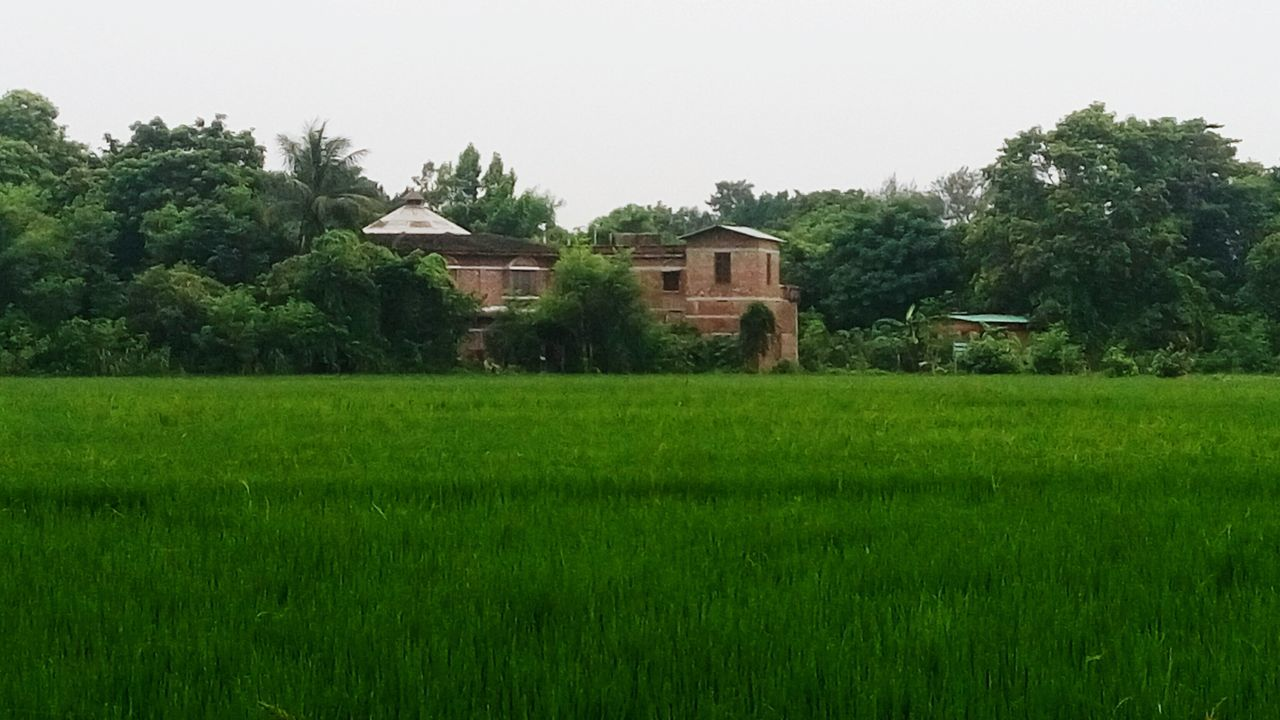 Tarumitra Ashram Farm