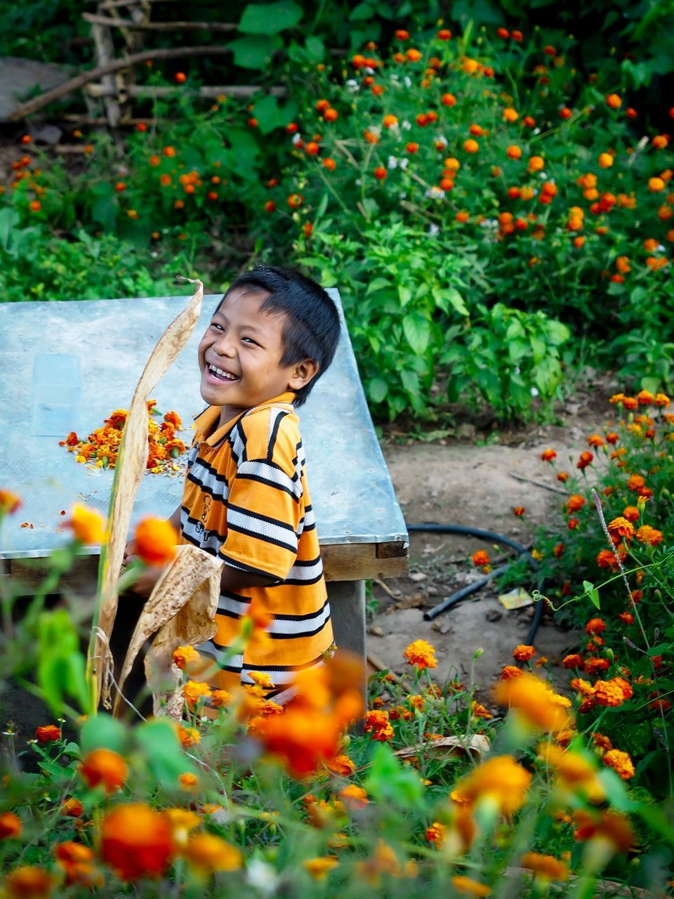 childhood, one person, growth, real people, outdoors, plant, boys, elementary age, day, full length, happiness, smiling, leisure activity, nature, standing, child, flower, one boy only, children only, people