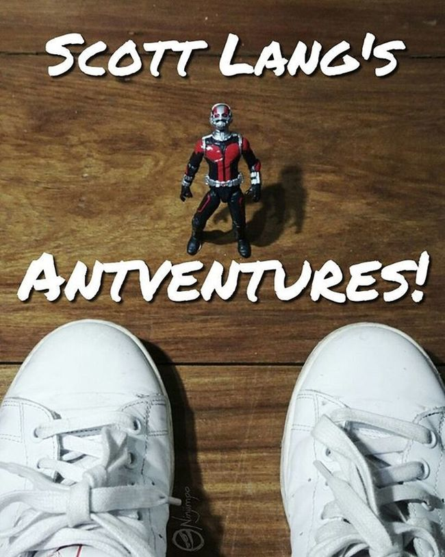 Scott Lang's Antventures started when I caught him in my house, out of Pym particles and unable to change size. Afaa AfaaNinjimpo Antman Marvel Scottlang PYM Ant Marvellegends Hasbro Toyspot Toyspotcollector Toycollective Toydiscovery Toyplanet Toycrewbuddies Epictoyart Justanothertoygroup Toptoyphotos Toyphotography