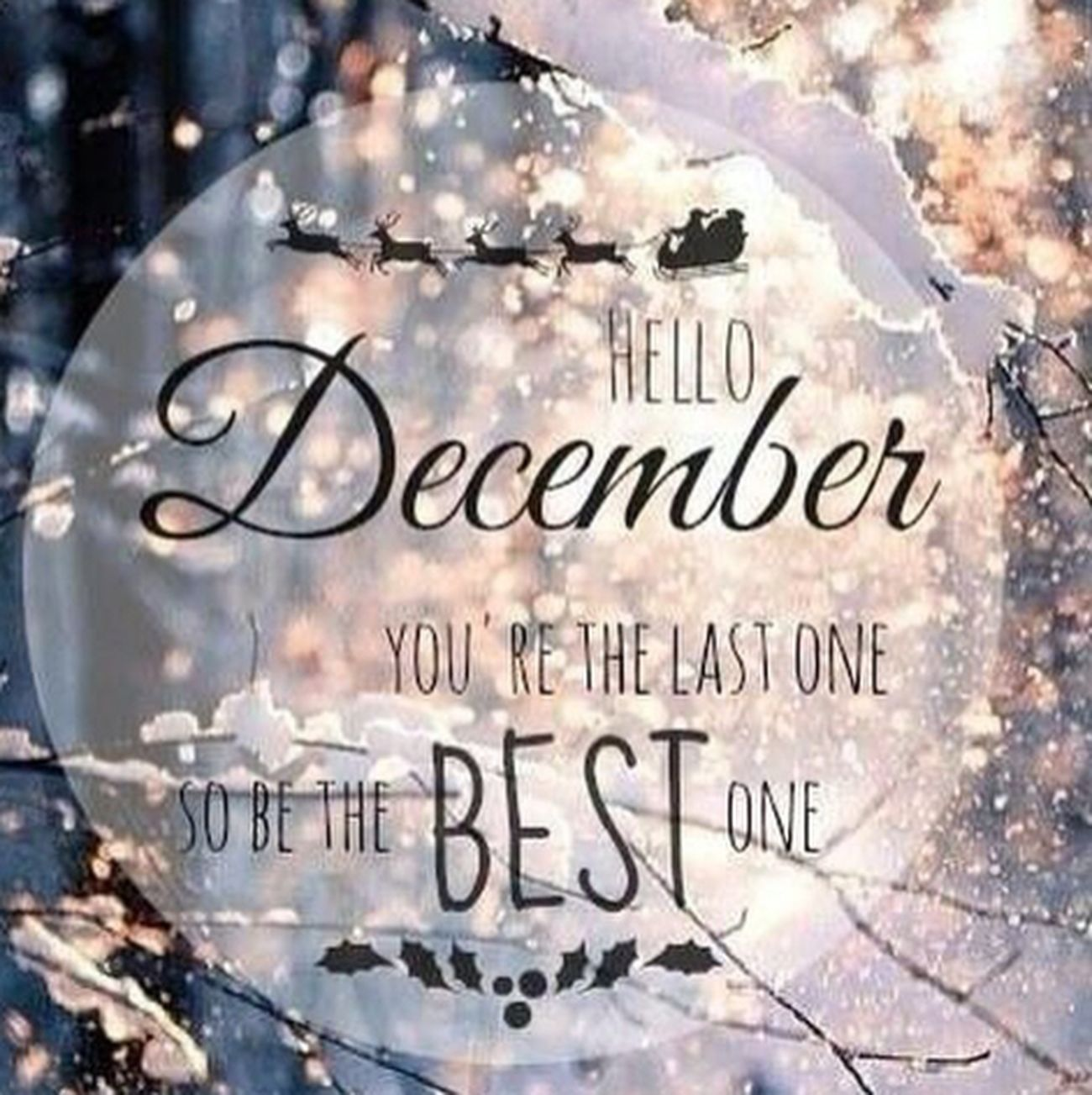 Hello winters□