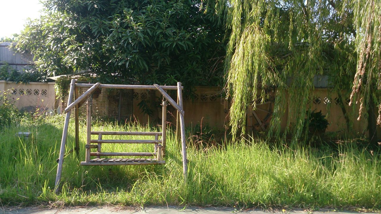 grass, tree, growth, green color, day, no people, outdoors, plant, nature, field, built structure, architecture, beauty in nature