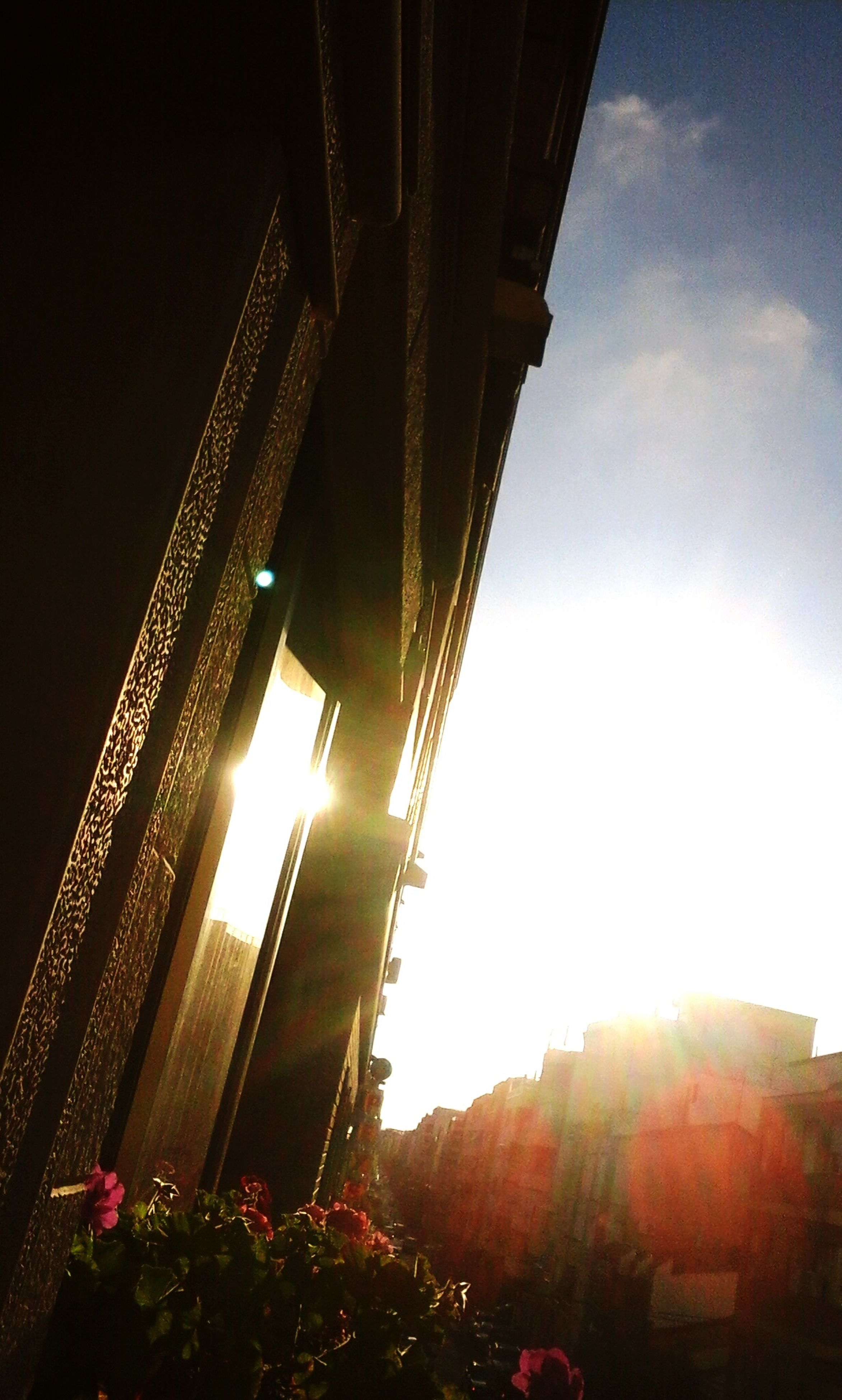 architecture, built structure, low angle view, building exterior, sky, city, sun, lens flare, sunlight, sunbeam, illuminated, outdoors, bridge - man made structure, no people, connection, building, cloud - sky, city life, sunset, tree
