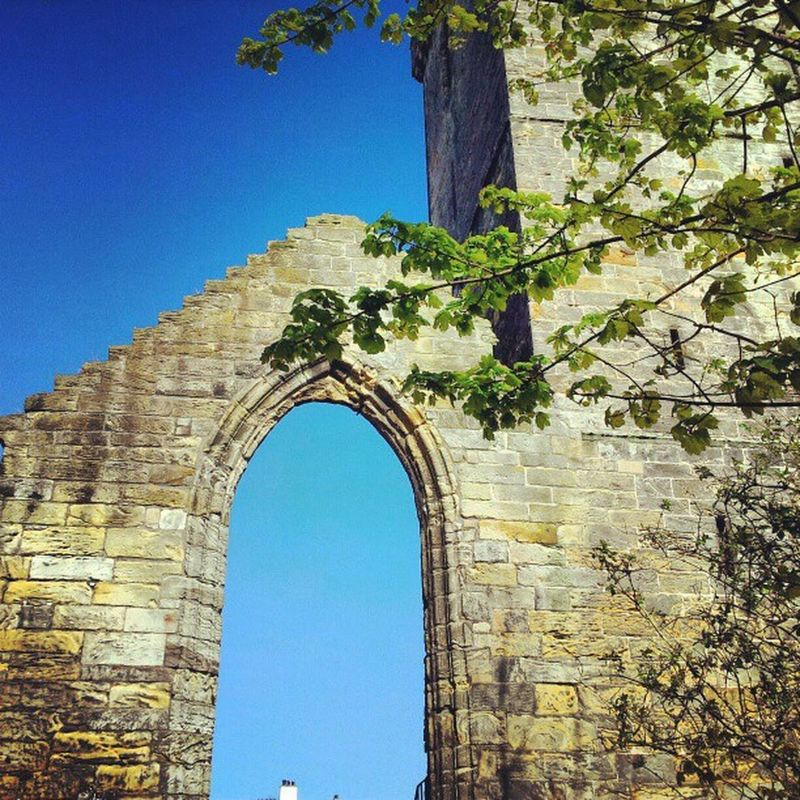 'Arch' Dysart Fife  Scotland Today blue skyporn Sky Trees Arches Gothic Monastery Instagrampolis instagram photography