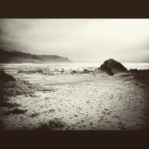 Asturias Vega Beach Playa