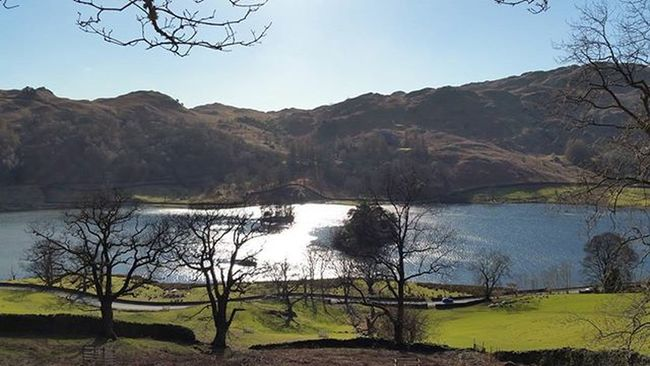 Rydal Water on Monday. Weather was perfect. Wish I had a wide angle lens 😢 Rydal Grasmere Lakedistrict Thelakedistrict Perfectscene Countryside Bs_world Island Lake Clear Bluesky Tree_captures Tree_magic Baretree Fells Hills Fellwalking