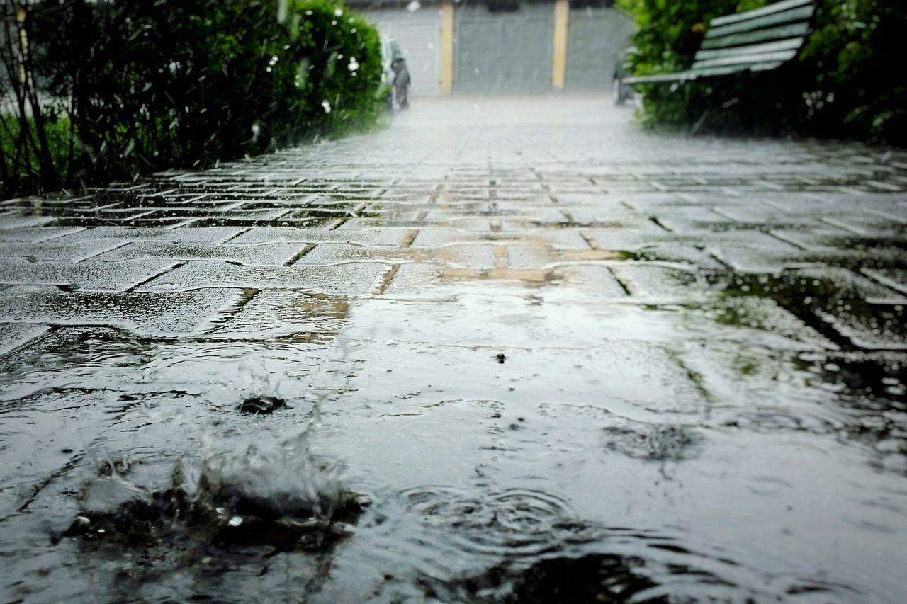 Beautiful stock photos of rain, Close-Up, Day, Drop, Empty