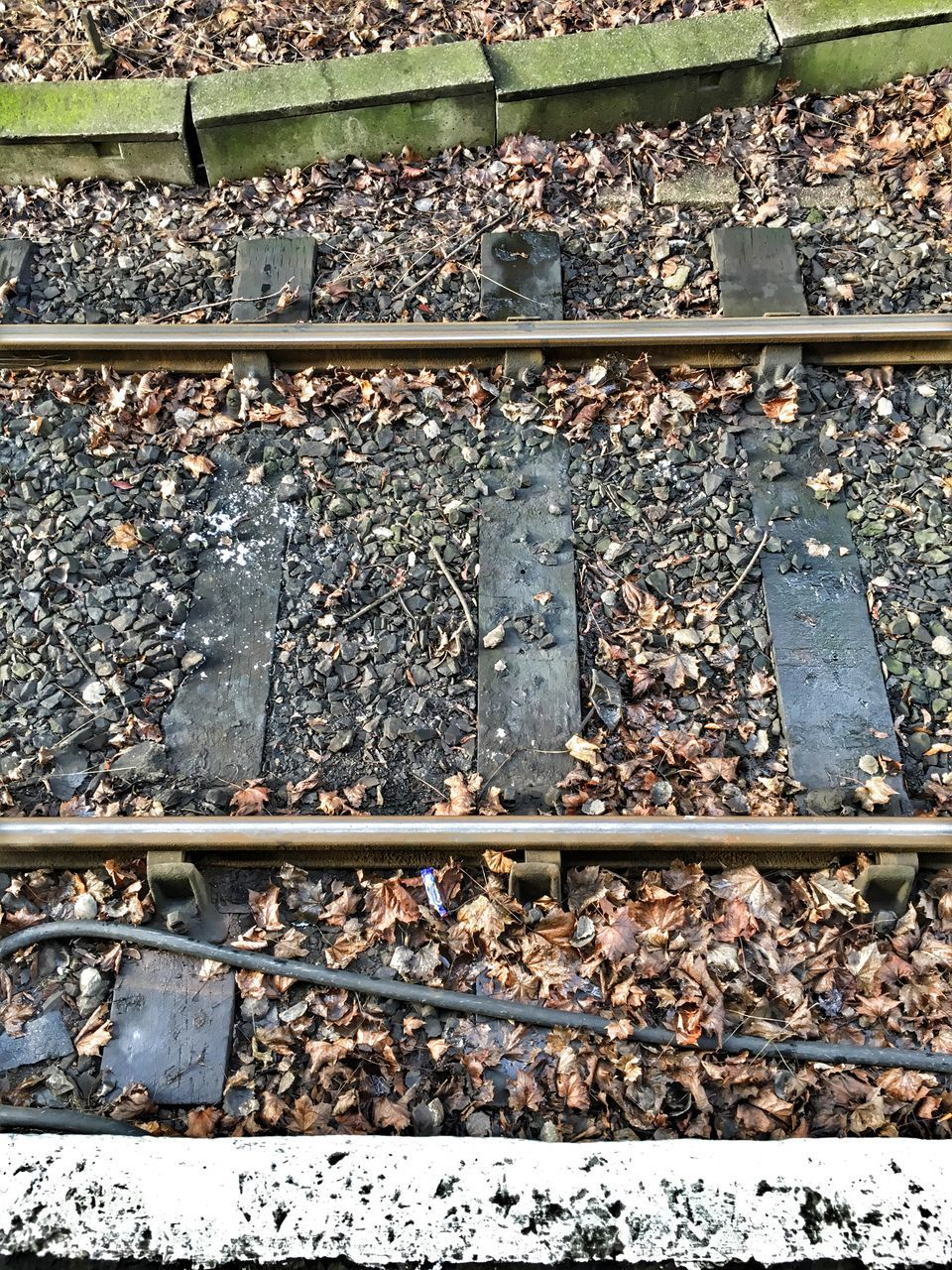 railroad track, rail transportation, railroad tie, metal, leaf, transportation, rock - object, day, high angle view, outdoors, railroad, railway track, no people, nature, close-up