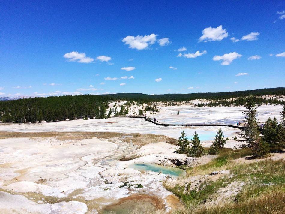 Yellowstone National Park Norris