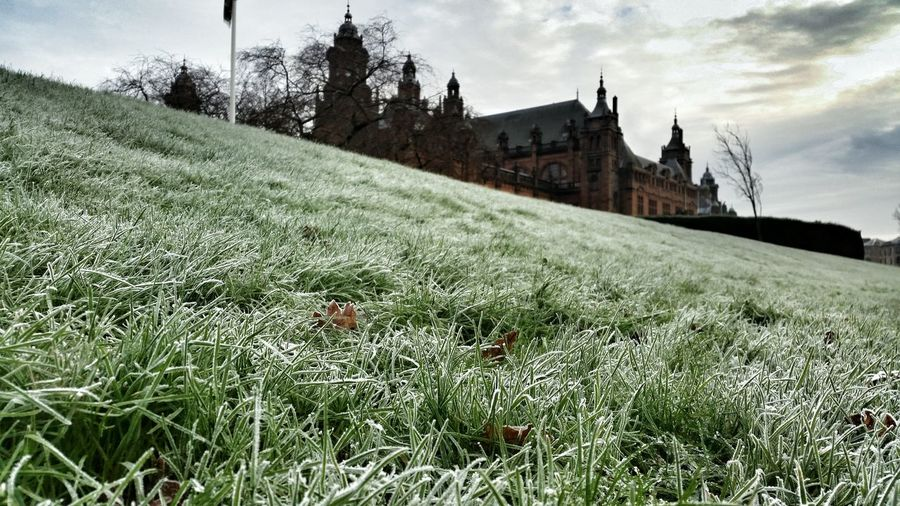 Glasgow  KelvingroveArtGalleries Kelvingrove Kelvingrovemuseum Kelvingrove Park Cold Winter The Journey Is The Destination Showcase: December Travel Amazing Amazing Architecture Green Grey Day Grey Sky Photooftheday Award Winning Photos Scotland Scottish Museum Snow Snow Day Snowing Photographer Beautiful