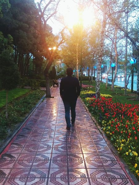 A Rainy Day in Spring ... Tehran Here Belongs To Me