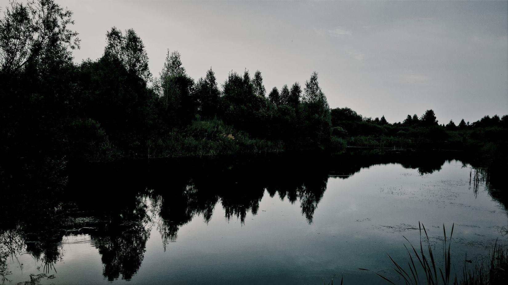 Water Trees Beauty Russia