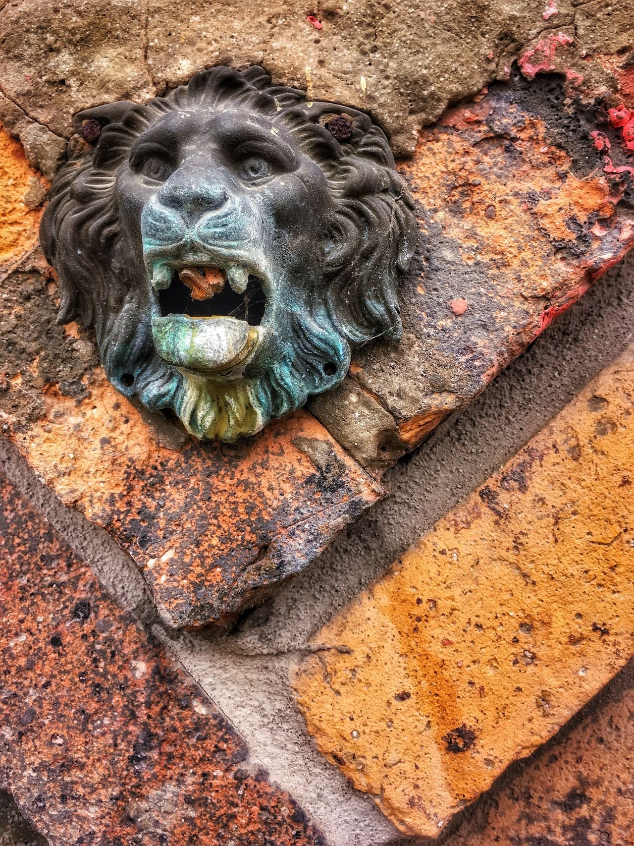 Lion head old fountain detail Outdoors One Animal No People Day Architecture Mammal Animal Themes Gargoyle Building Exterior Nature Close-up Lion Lions HEAD Fountain Vintage Old Old-fashioned Old Architecture Vintage Style Vintage Photography Vintage Signs Bricks Lion Sculpture Detail