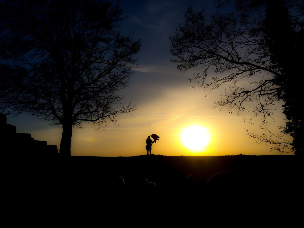 Man with bird against sunset Baden-Württemberg  Beauty In Nature Bird Cloud - Sky Falcon GERMANY🇩🇪DEUTSCHERLAND@ Mammal Man Nature One Person Outdoors People Silhouette Sky Sun Sunset Tree Surrealism Surreal Dreamlike