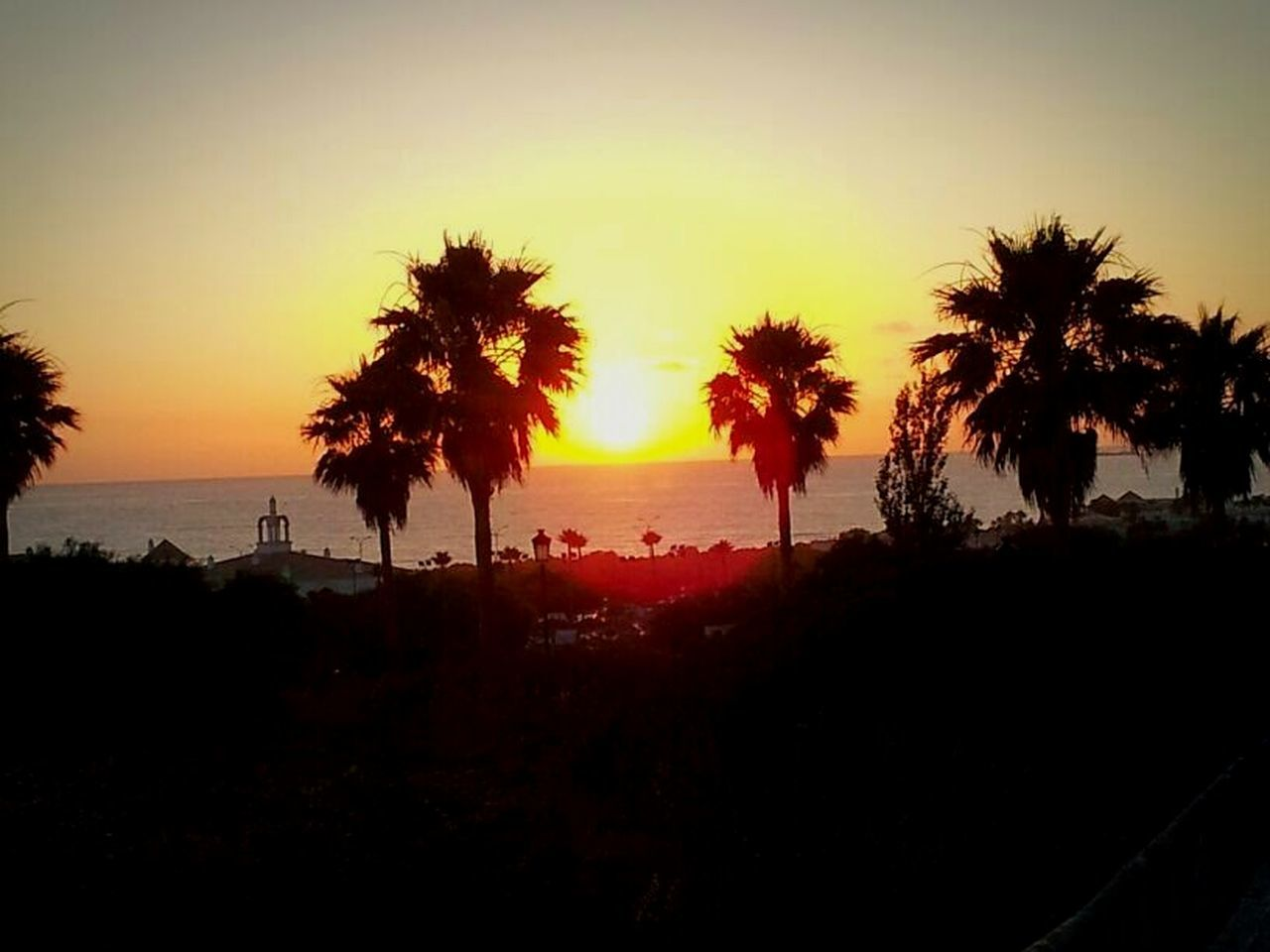 sunset, silhouette, tree, palm tree, beauty in nature, scenics, orange color, tranquility, nature, tranquil scene, no people, beach, sea, sky, outdoors, water, vacations, day