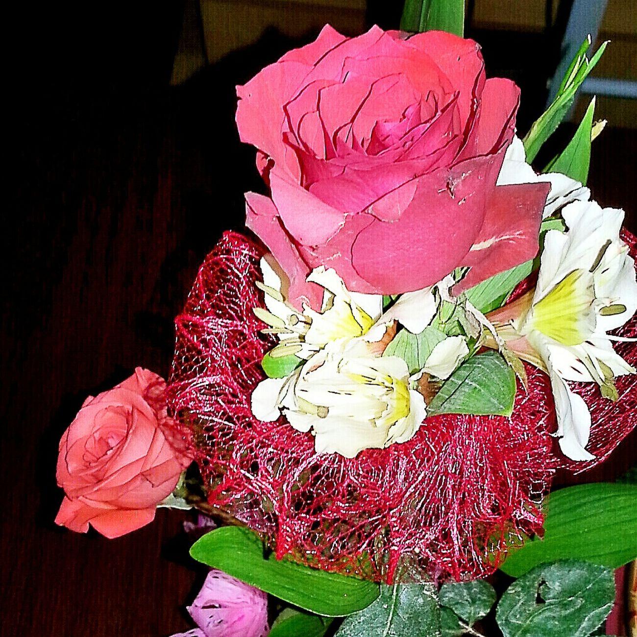 EyeEm Best Shots EyeEm Gallery Eyeem Philippines Celebrating 💖 Day Happy Valentines Day ❤ Celebrating Love! Flower Power Enjoying Life
