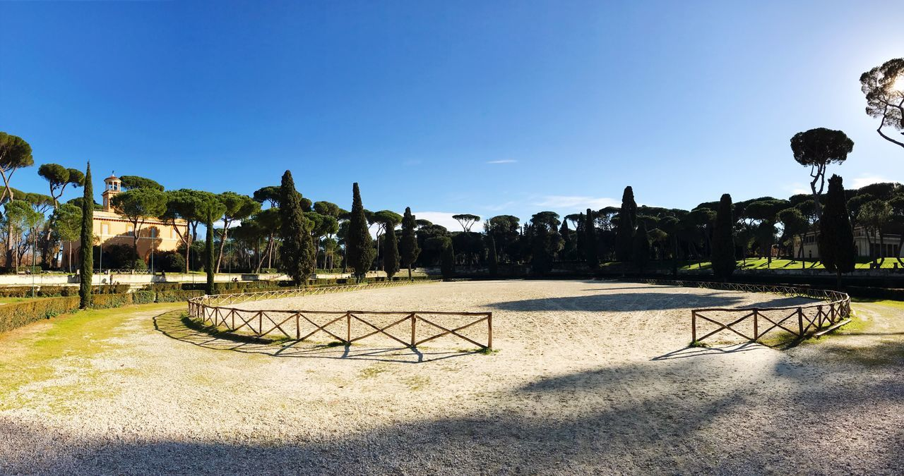 Rome Park Panorama Parco Dei Daini Villa Borghese Park Clear Sky Tree Blue Sunlight Tranquil Scene Growth Beauty In Nature Nature Tranquility Sky Scenics Outdoors No People Shadow Palm Tree Day