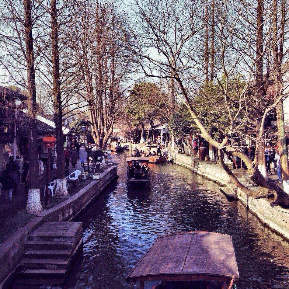 Tree Water Bare Tree Nature Landscape Landscape_Collection Zhujiajiao Shanghai China