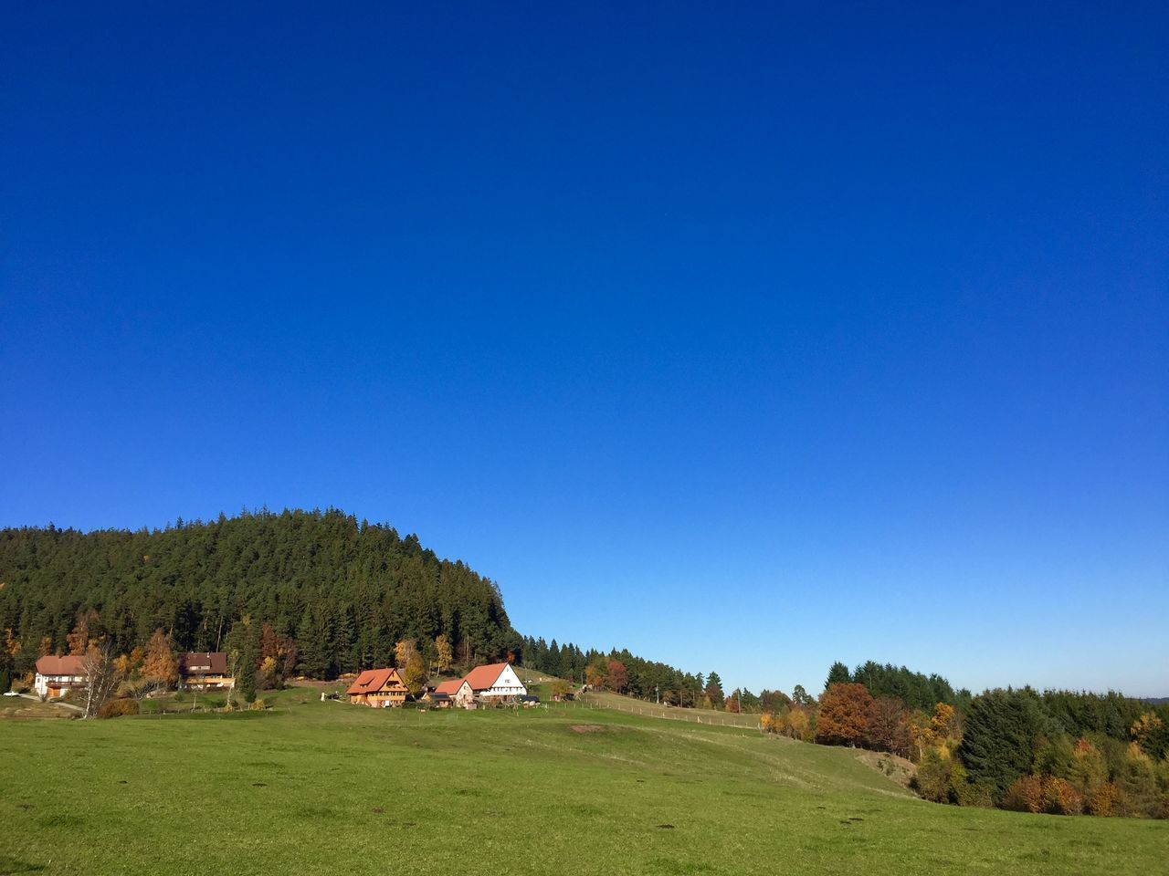 Sulzbacher Panorama Sulzbach Black Forest Blue Sky Schwarzwald Baden-Württemberg  Germany Beautiful Nature Walking Around Green Grass