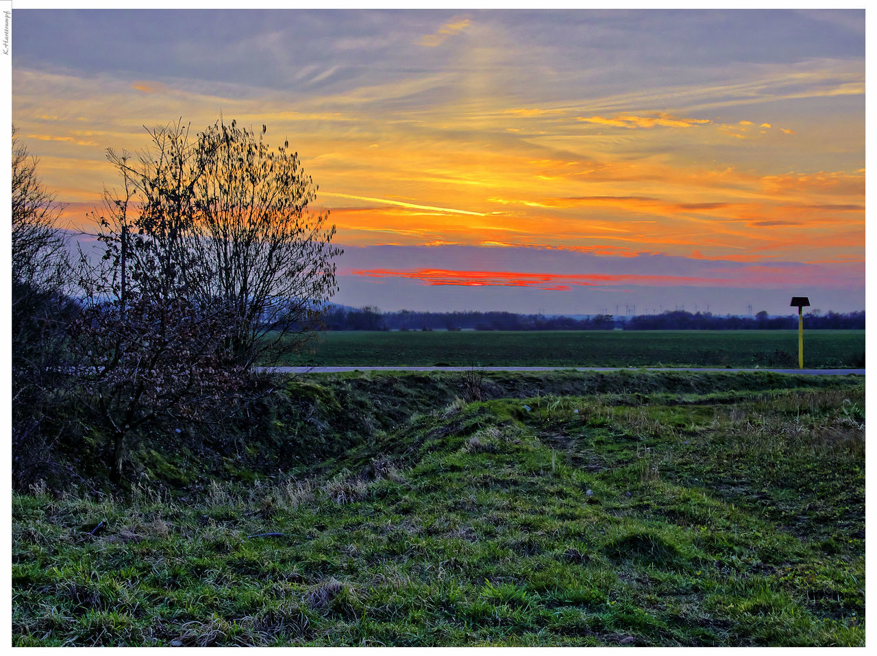 sunset, nature, grass, beauty in nature, tranquility, field, landscape, tranquil scene, scenics, growth, no people, sky, outdoors, agriculture, tree, rural scene, day