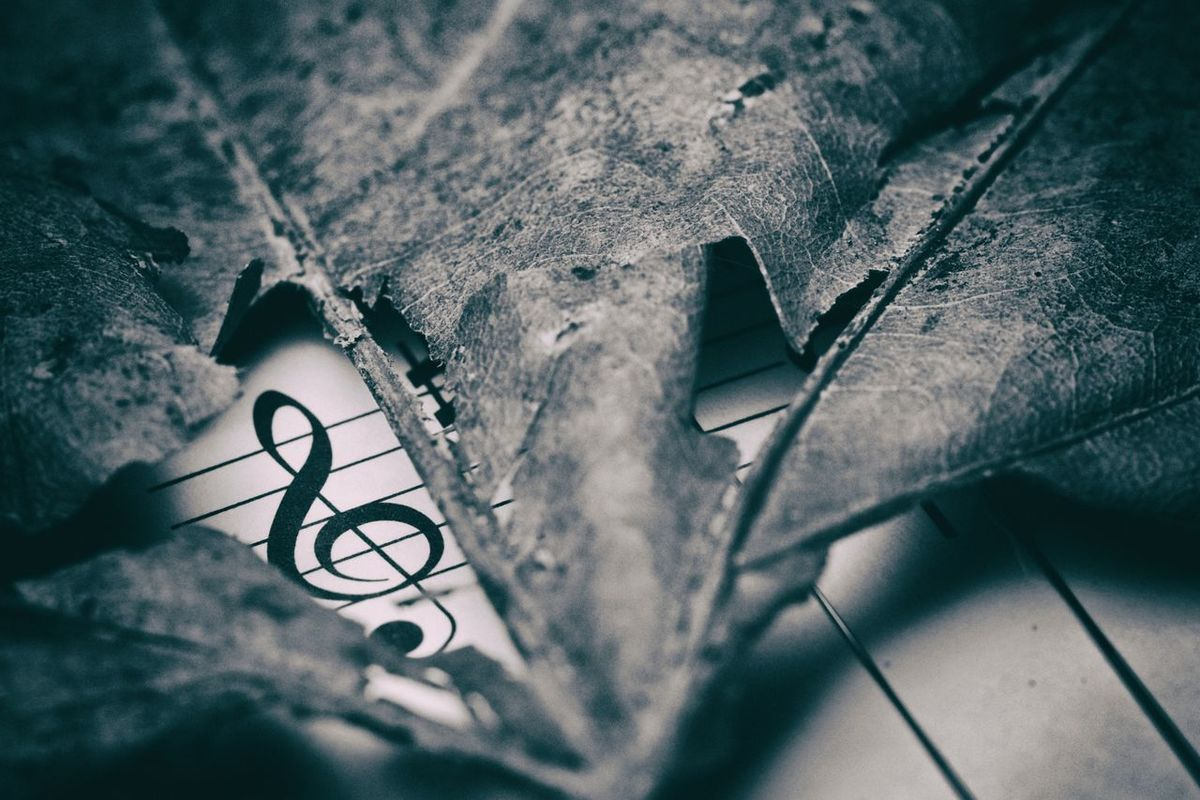 """Music does not need a visa to enter your heart."" ― Sukant Ratnakar Chord Classical Music Clef Close-up Dry Leaf G Clef Indoors  Macro Macro Photography Music Music Book Music Brings Us Together Music Is My Life Musician Quotes"