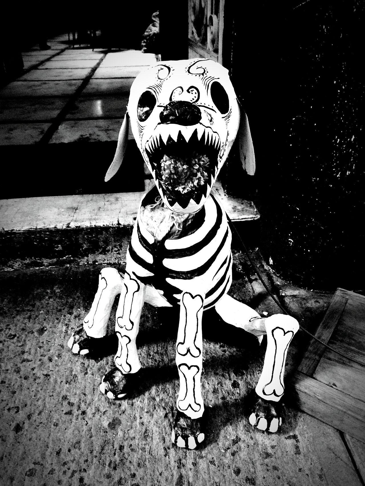 Dead Day Mexico Dıa De Muertos