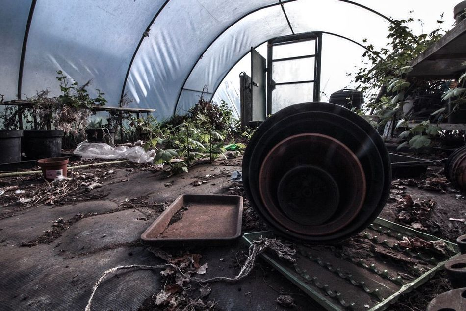 Plant Indoors  Abandoned No People Architecture Day Polytunnel Abandoned Places Horticulture Garden Gardening