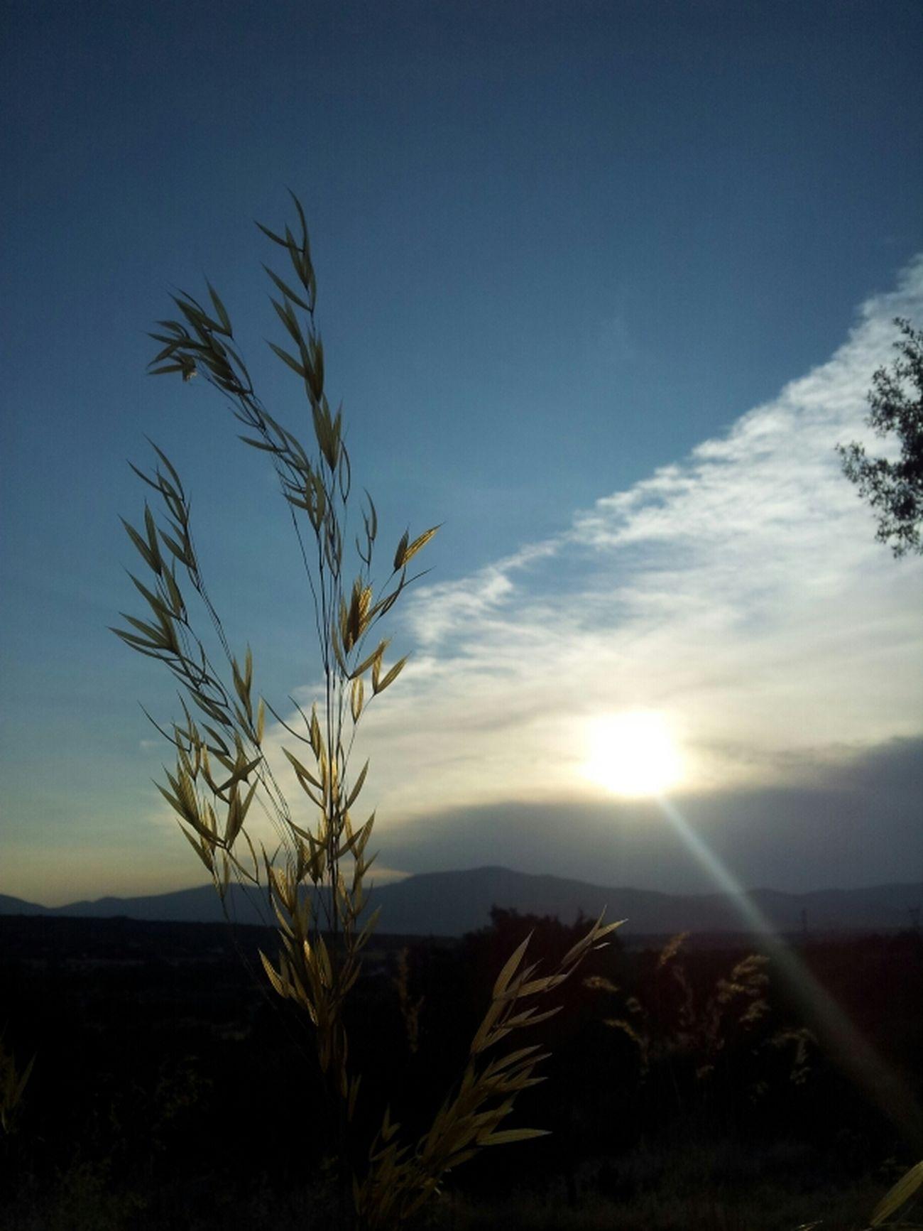 Sunset Nature Landscape Rest & Relax