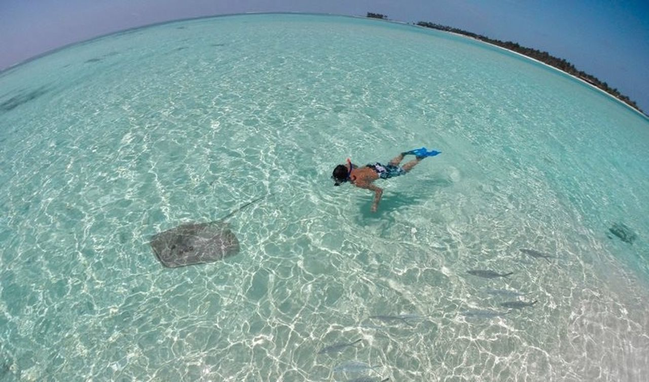 sea, leisure activity, adventure, swimming, snorkeling, day, one person, outdoors, lifestyles, real people, vacations, nature, full length, fish-eye lens, scuba diving, undersea, one man only, people, adult, only men, adults only