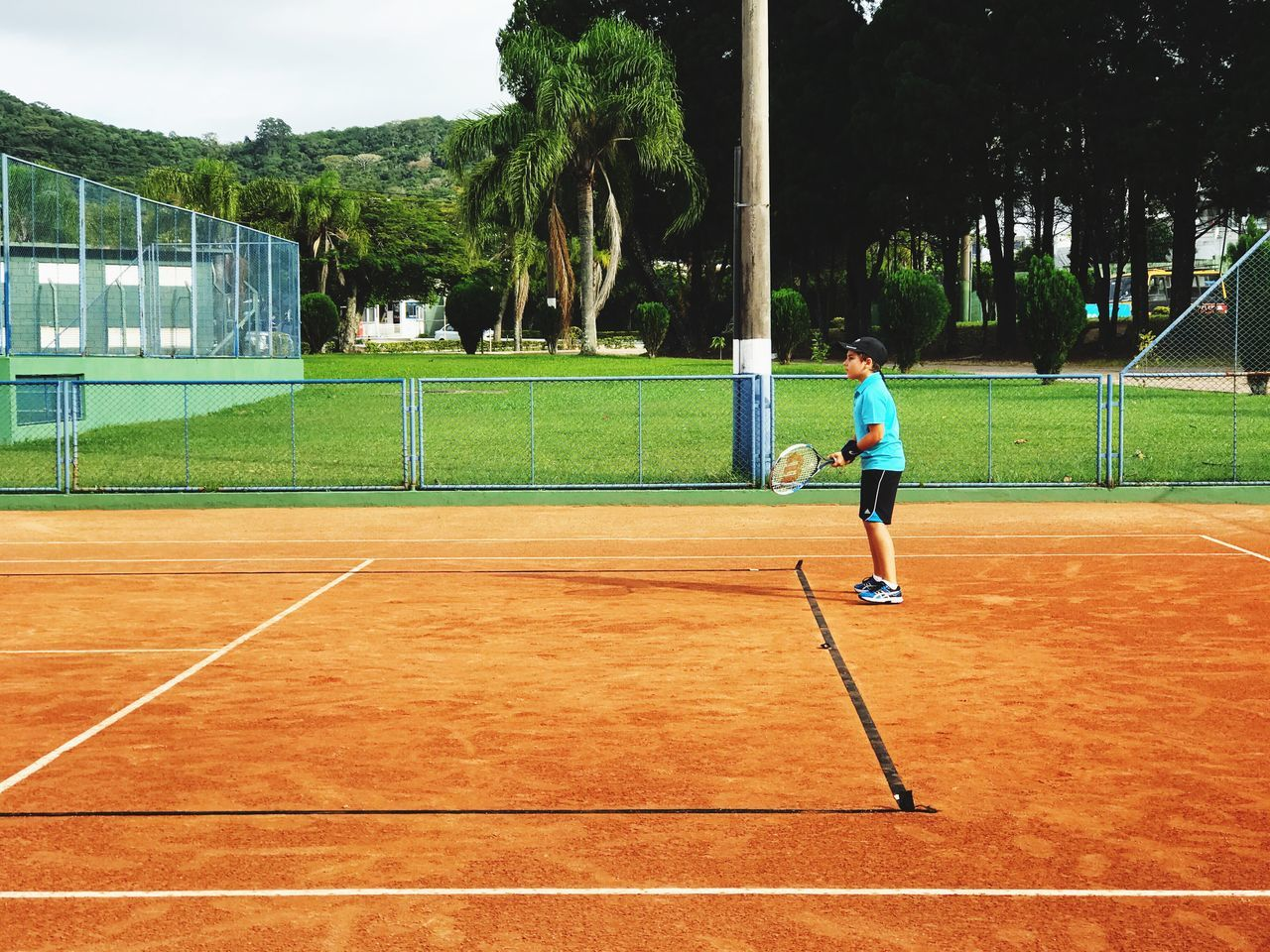 Sport Tennis Playing Court Full Length Lifestyles Leisure Activity Tree Tennis Racket Sportsman Practicing Activity Tennis Ball Sports Clothing One Person Baseball - Sport Healthy Lifestyle Sports Venue Ball Exercising