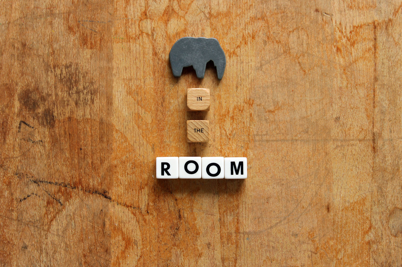 Elephant in the room Business Concept Elephant Idiom Idiom, Concept, Phrase, Business, Communication, Problem, Issue, Big Phrases Problem Trouble