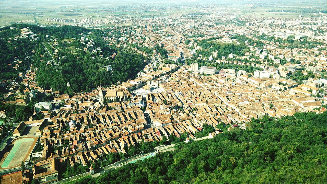 Aerial View Of Houses And Trees In City